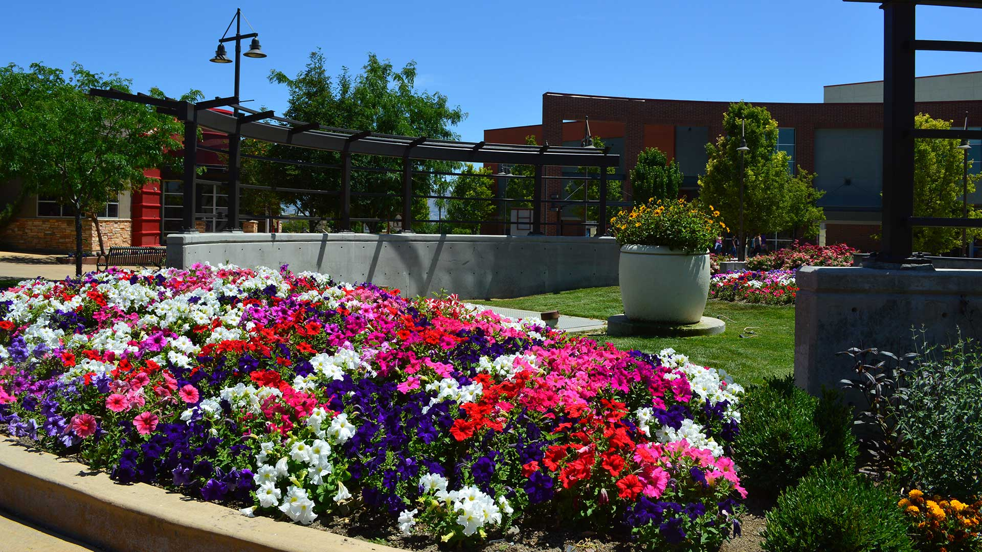 Commercial landscaping done for a business in Draper with annual flowers.