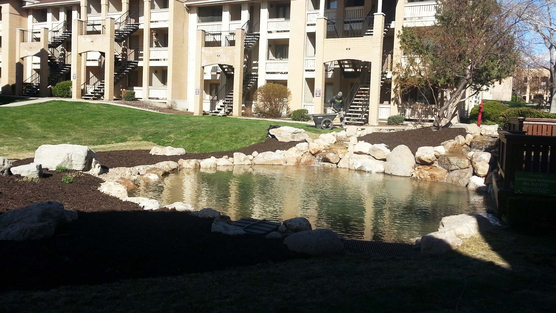 Landscaping around a pond at an apartment complex.