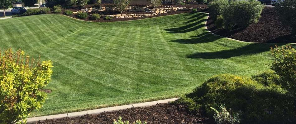 Healthy, green, mowed lawn and edged landscaping beds with fresh mulch in Lehigh, UT.