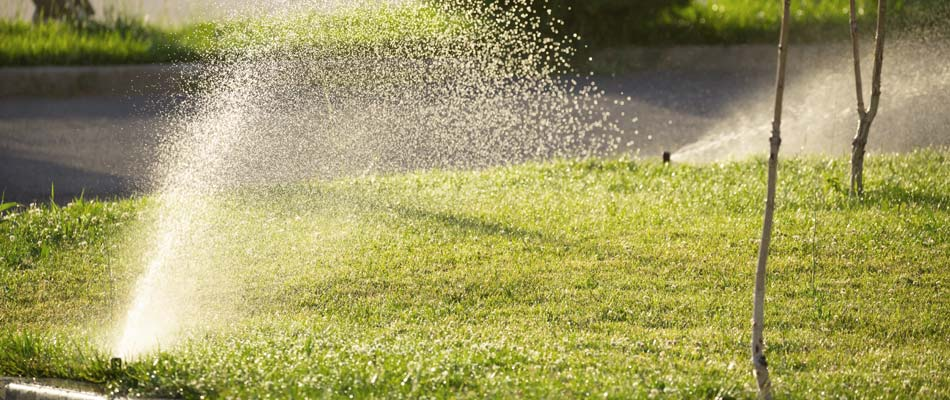 Our client's irrigation system that we are testing for proper watering of the lawn in Draper..