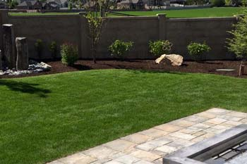 Healthy green lawn that we keep fertilized and weed free in the backyard of a property in Draper.